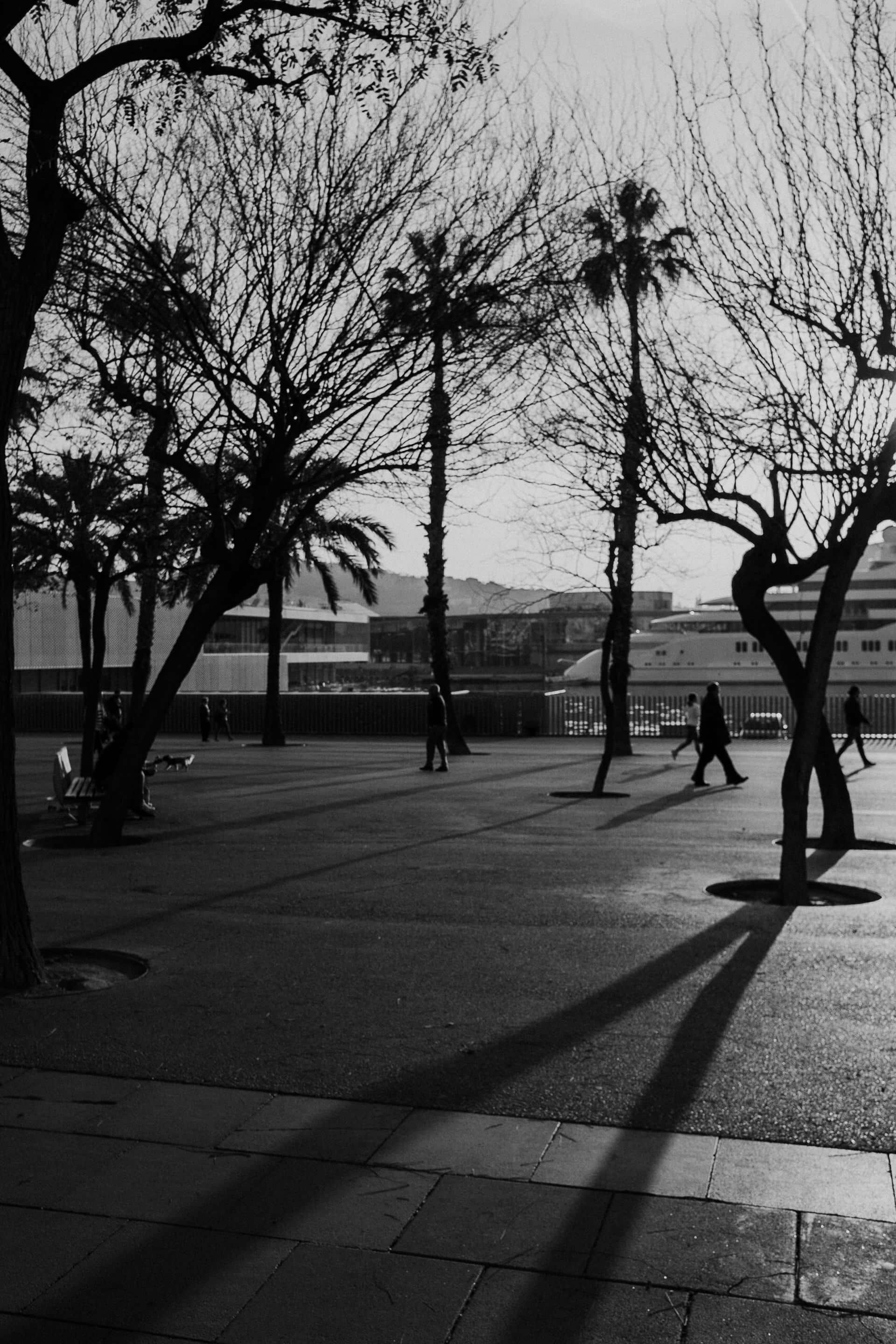 Black and white of sunset in Barcelona